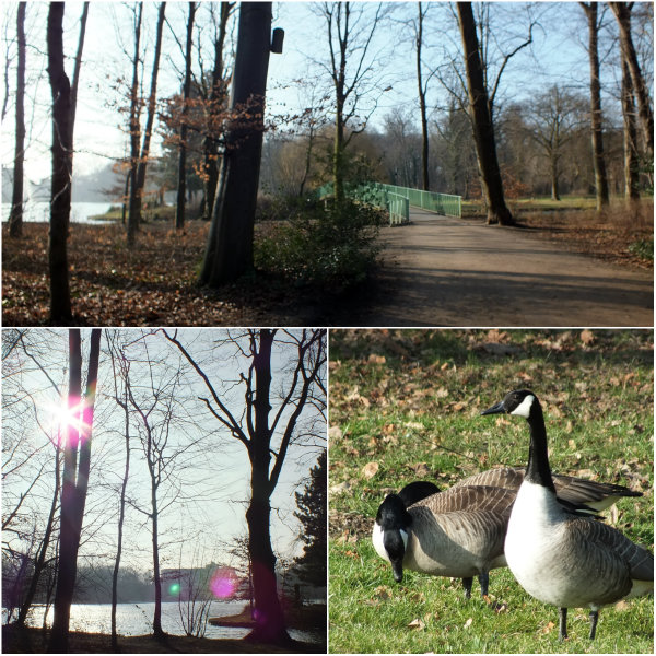 koeln_tierpark_collage_1